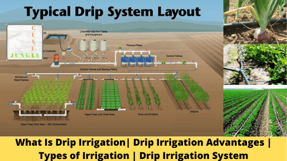 What Is Drip Irrigation| Drip Irrigation Advantages | Types of Irrigation | Drip Irrigation System