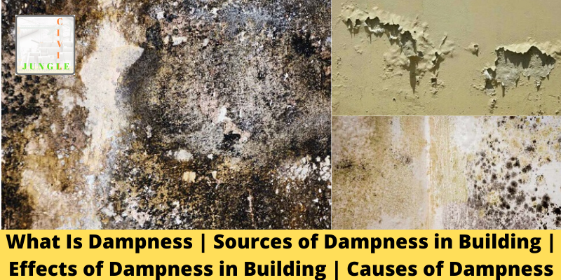 Effects of Dampness
